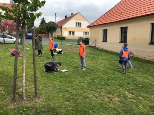 ZŠ: Projektový den